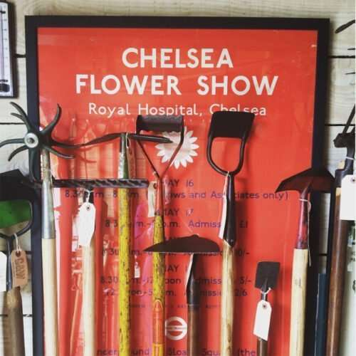 RHS, Chelsea & Flower Shows