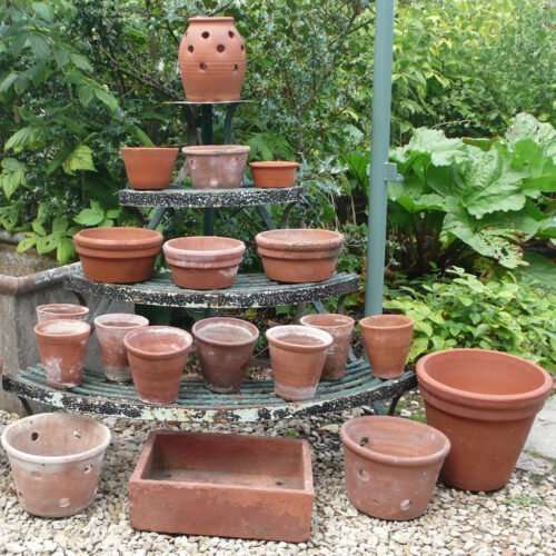Terracotta and Flower Pots